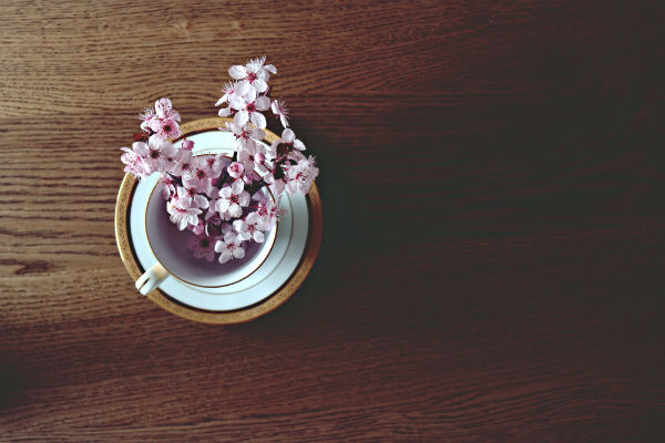Cup of blossom